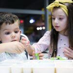 Akademia EMT Kids_Robotyka